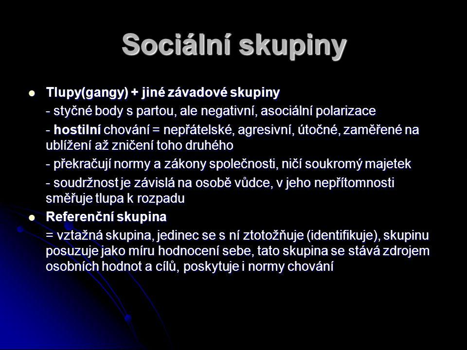 Sociální skupiny Tlupy(gangy) + jiné závadové skupiny Tlupy(gangy) + jiné závadové skupiny - styčné body s partou, ale negativní, asociální polarizace