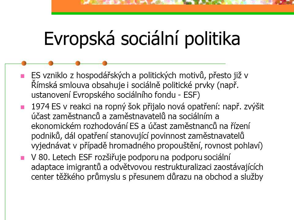 Evropská sociální politika Základní dokument Evropská sociální charta(přijatá v r. 1961, novelizace 1988 a 1991): 23 hlavních bodů Evropská kulturní k