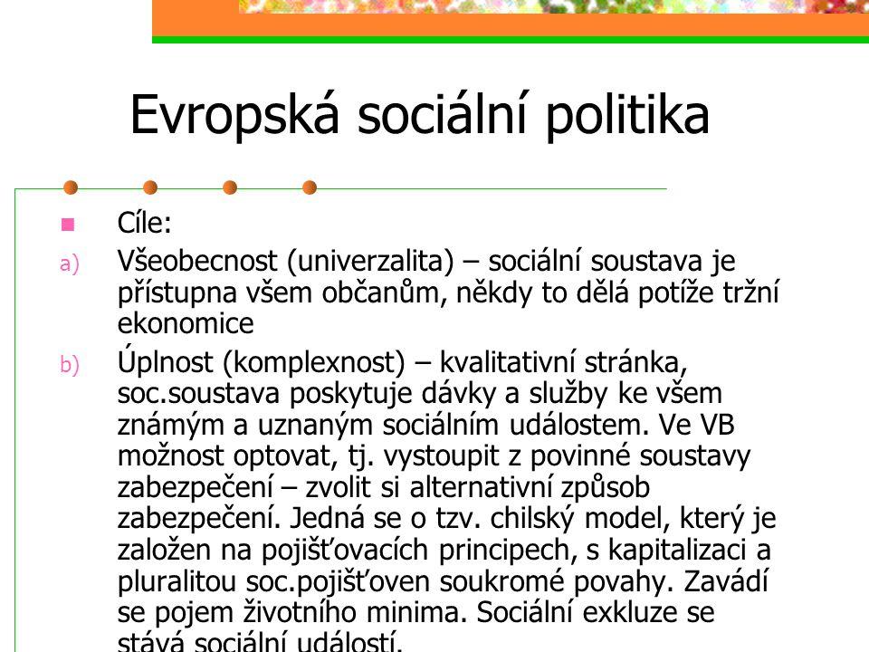 Evropská sociální politika V listopadu 1993 vstoupila v platnost Maastrichtská smlouva o Evropské unii, cíle: podporovat trvalé udržitelný ekonomický