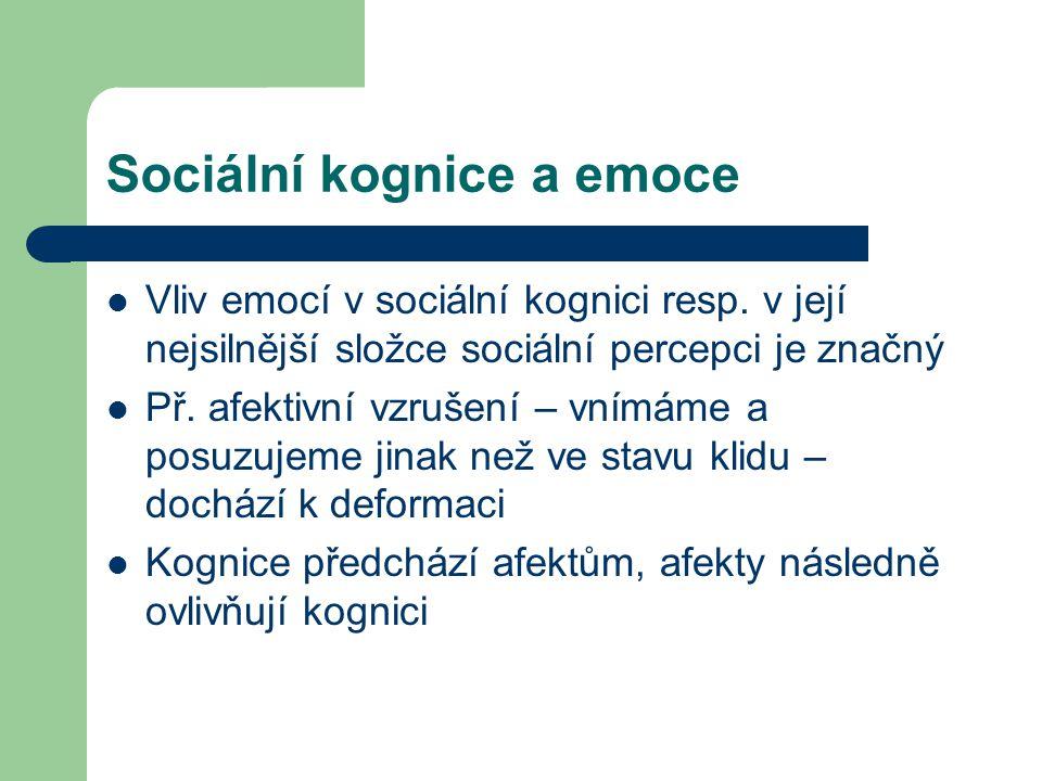 Sociální kognice a emoce Vliv emocí v sociální kognici resp. v její nejsilnější složce sociální percepci je značný Př. afektivní vzrušení – vnímáme a