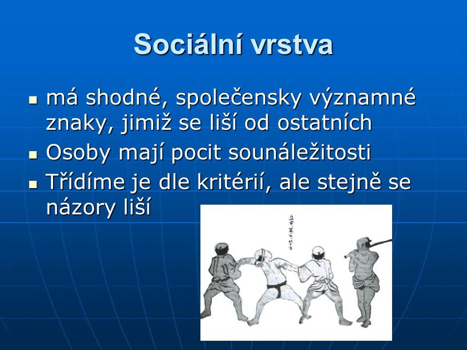 Sociální vrstva má shodné, společensky významné znaky, jimiž se liší od ostatních má shodné, společensky významné znaky, jimiž se liší od ostatních Osoby mají pocit sounáležitosti Osoby mají pocit sounáležitosti Třídíme je dle kritérií, ale stejně se názory liší Třídíme je dle kritérií, ale stejně se názory liší