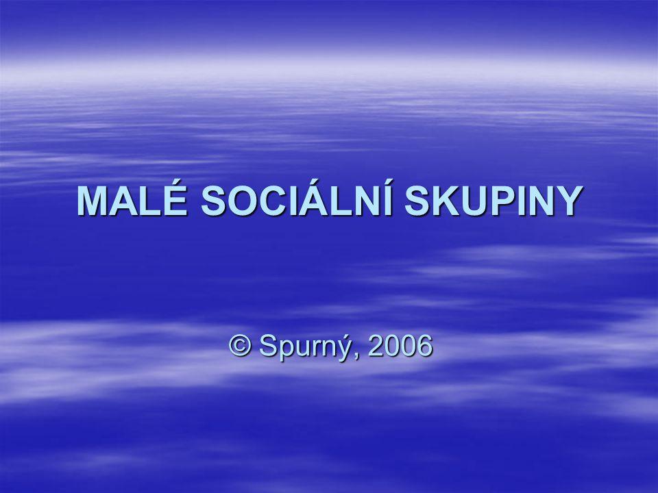 MALÉ SOCIÁLNÍ SKUPINY © Spurný, 2006