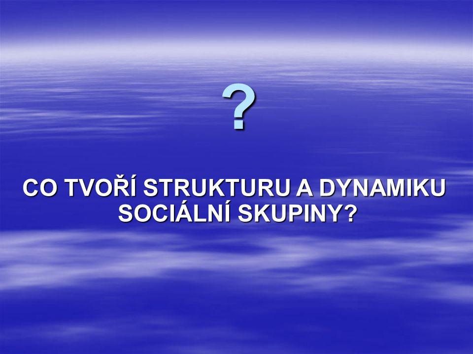 CO TVOŘÍ STRUKTURU A DYNAMIKU SOCIÁLNÍ SKUPINY? ?