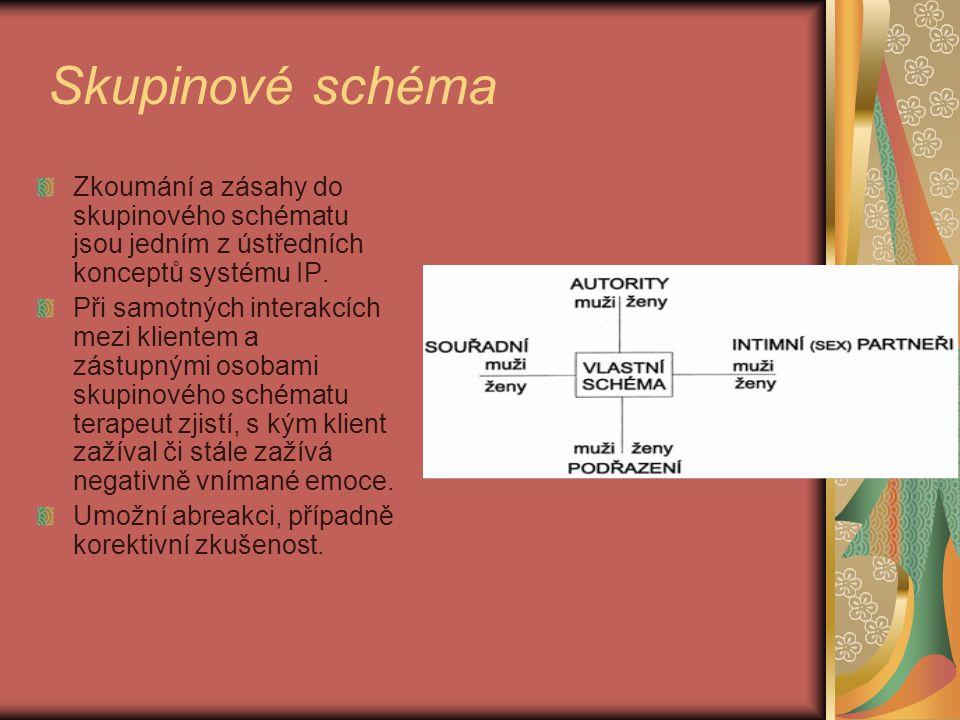 Skupinové schéma Zkoumání a zásahy do skupinového schématu jsou jedním z ústředních konceptů systému IP. Při samotných interakcích mezi klientem a zás