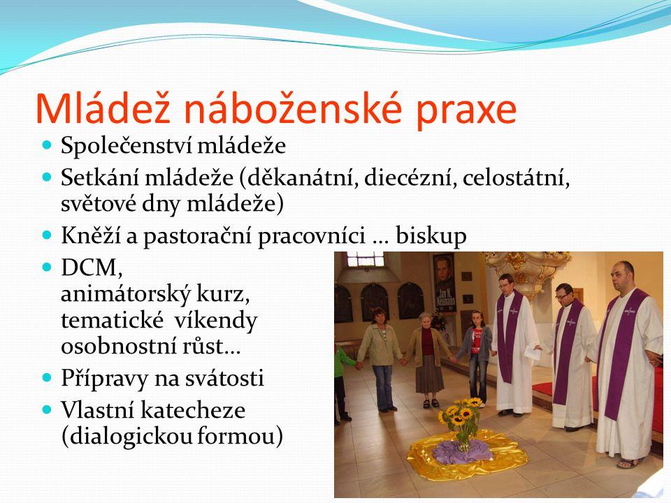 Mládež náboženské praxe Společenství mládeže Setkání mládeže (děkanátní, diecézní, celostátní, světové dny mládeže) Kněží a pastorační pracovníci … bi