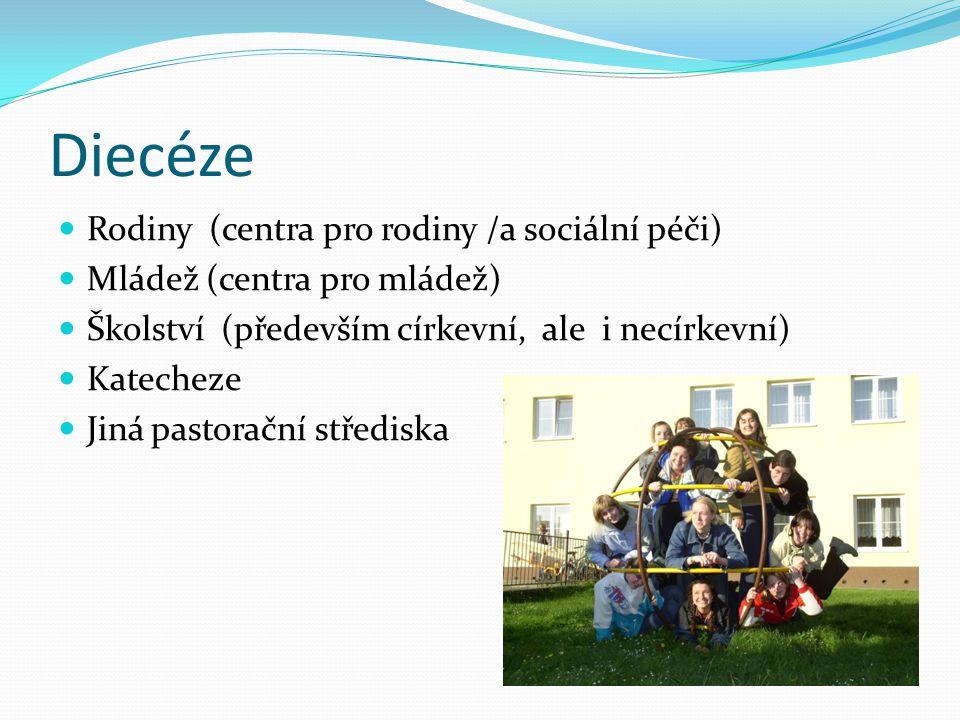 Diecéze Rodiny (centra pro rodiny /a sociální péči) Mládež (centra pro mládež) Školství (především církevní, ale i necírkevní) Katecheze Jiná pastorač