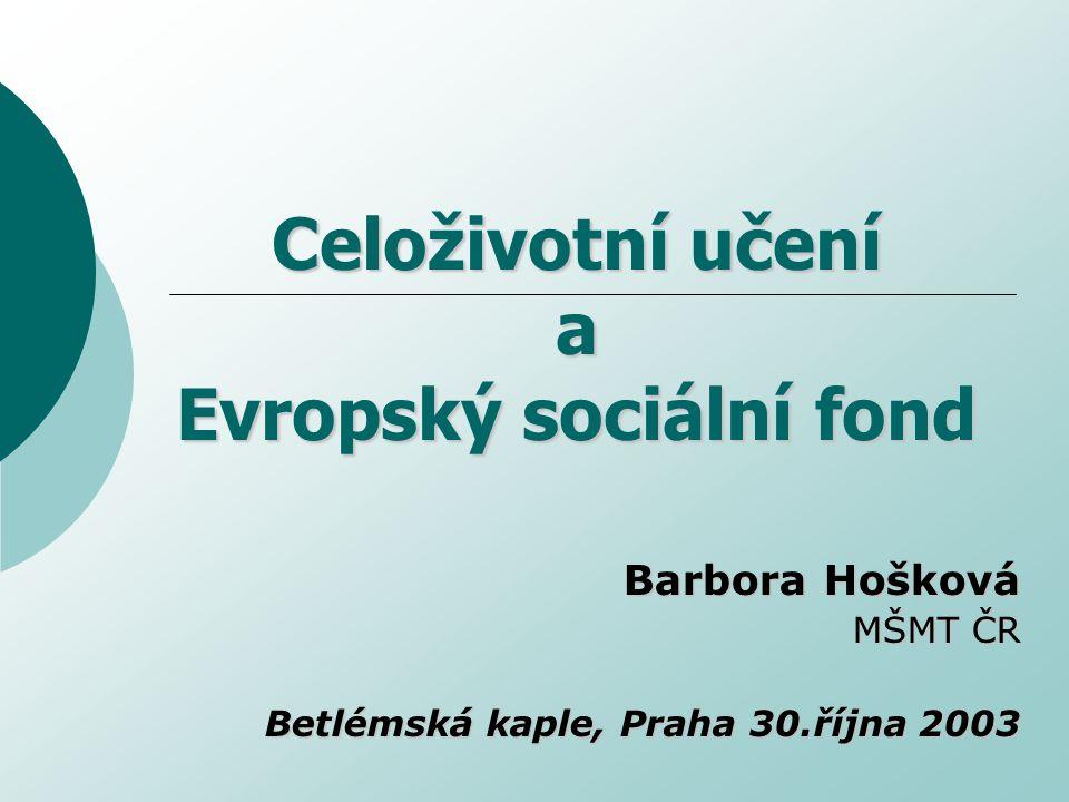Celoživotní učení a Evropský sociální fond Barbora Hošková MŠMT ČR Betlémská kaple, Praha 30.října 2003