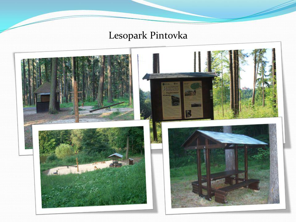 Lesopark Pintovka
