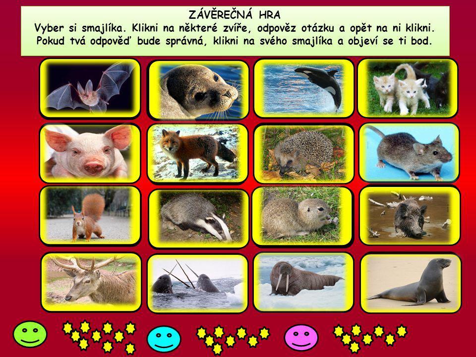 ZÁVĚREČNÁ HRA Vyber si smajlíka. Klikni na některé zvíře, odpověz otázku a opět na ni klikni. Pokud tvá odpověď bude správná, klikni na svého smajlíka
