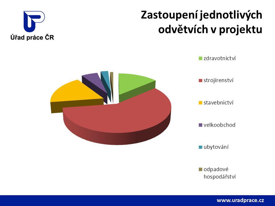 Zastoupení jednotlivých odvětvích v projektu