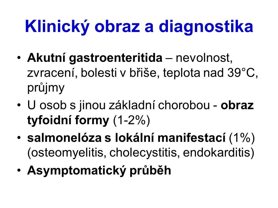Klinický obraz a diagnostika Akutní gastroenteritida – nevolnost, zvracení, bolesti v břiše, teplota nad 39°C, průjmy U osob s jinou základní chorobou