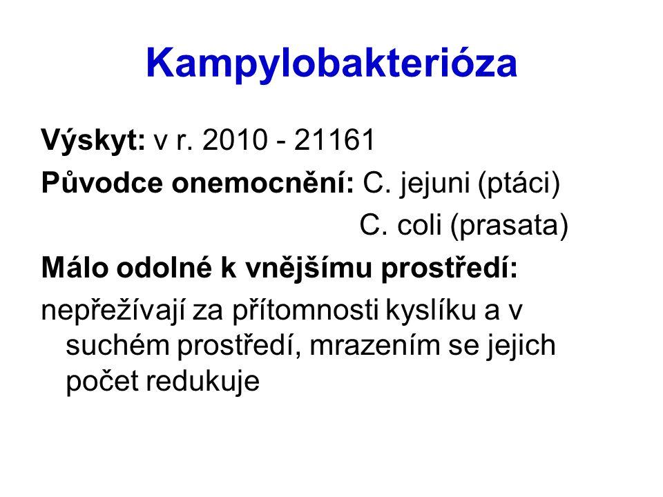 Kampylobakterióza Výskyt: v r. 2010 - 21161 Původce onemocnění: C. jejuni (ptáci) C. coli (prasata) Málo odolné k vnějšímu prostředí: nepřežívají za p