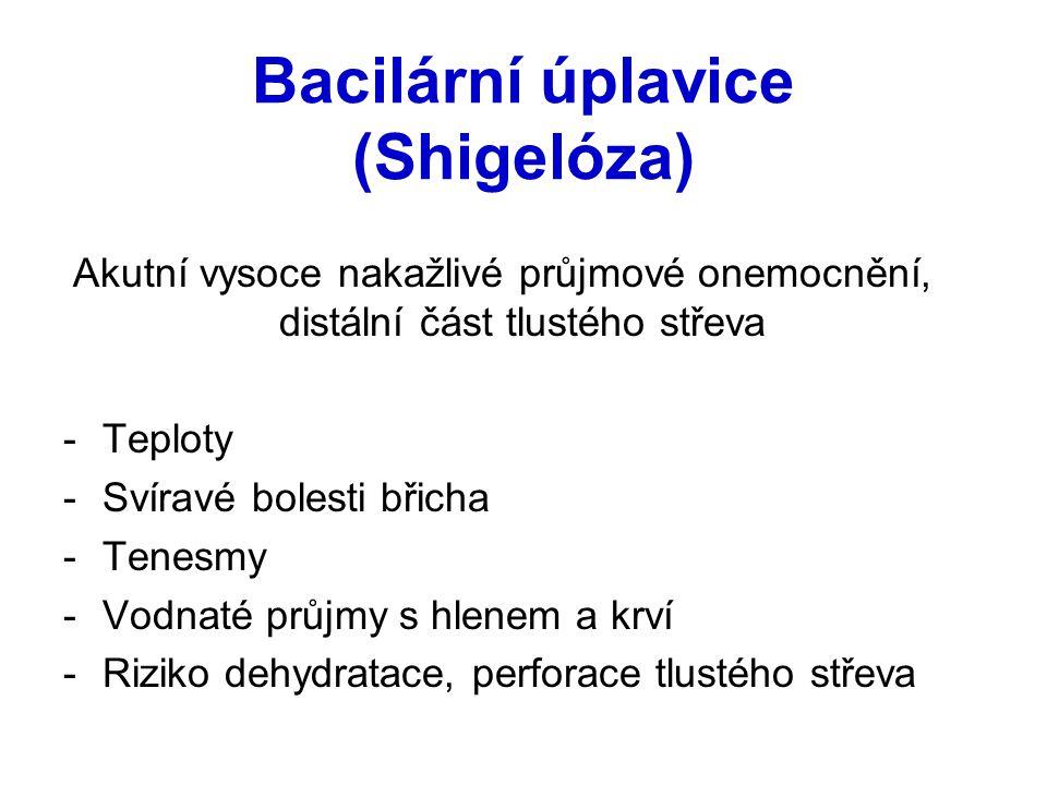 Bacilární úplavice (Shigelóza) Akutní vysoce nakažlivé průjmové onemocnění, distální část tlustého střeva -Teploty -Svíravé bolesti břicha -Tenesmy -V