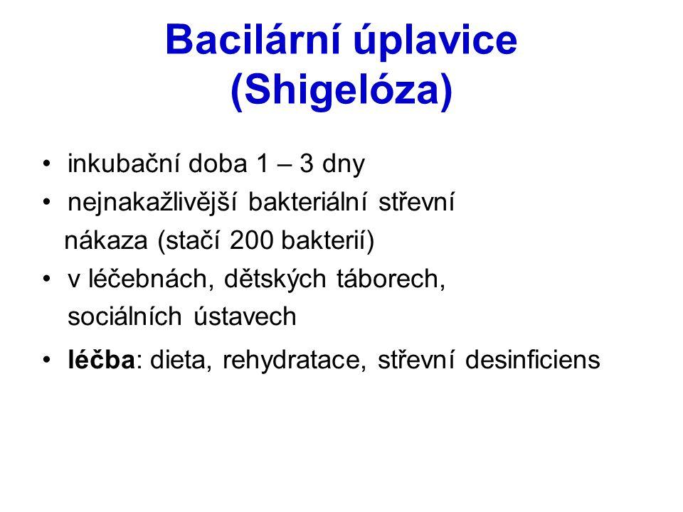 Bacilární úplavice (Shigelóza) inkubační doba 1 – 3 dny nejnakažlivější bakteriální střevní nákaza (stačí 200 bakterií) v léčebnách, dětských táborech