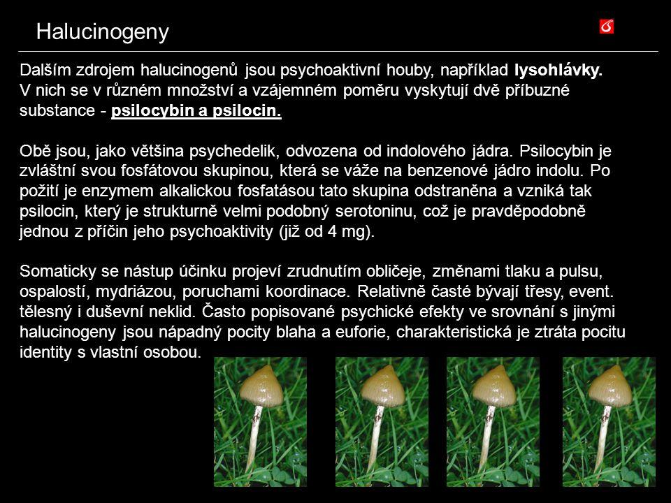 Halucinogeny Dalším zdrojem halucinogenů jsou psychoaktivní houby, například lysohlávky. V nich se v různém množství a vzájemném poměru vyskytují dvě