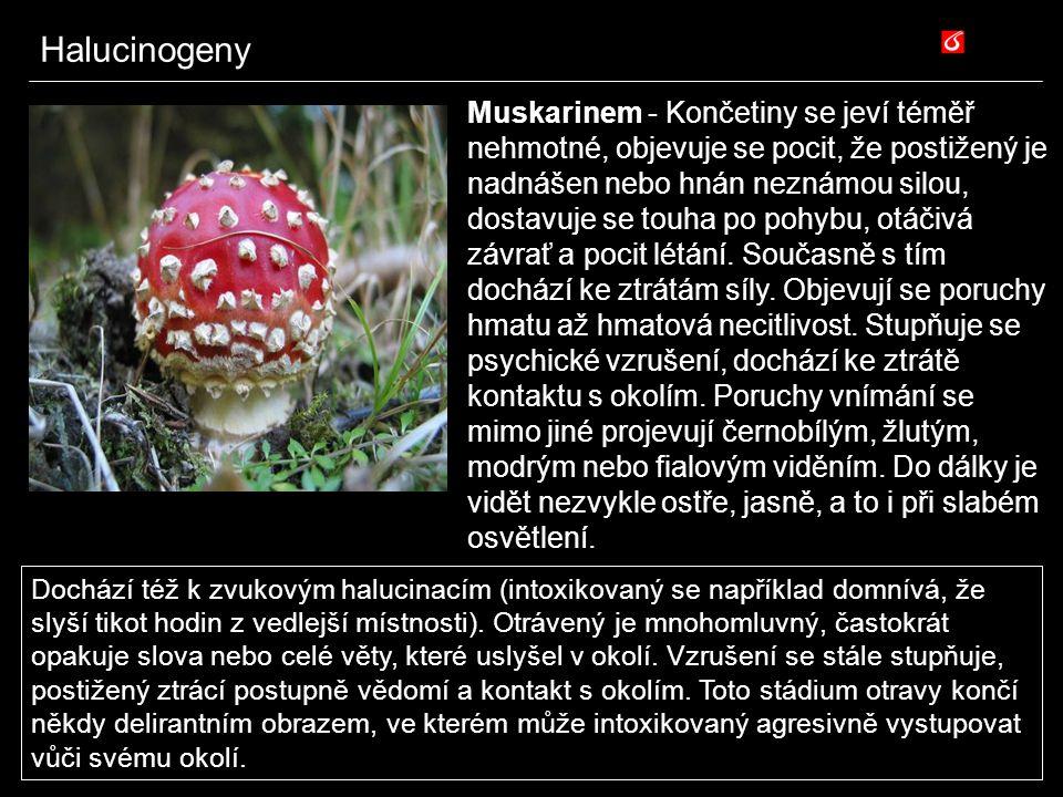 Halucinogeny Muskarinem - Končetiny se jeví téměř nehmotné, objevuje se pocit, že postižený je nadnášen nebo hnán neznámou silou, dostavuje se touha p