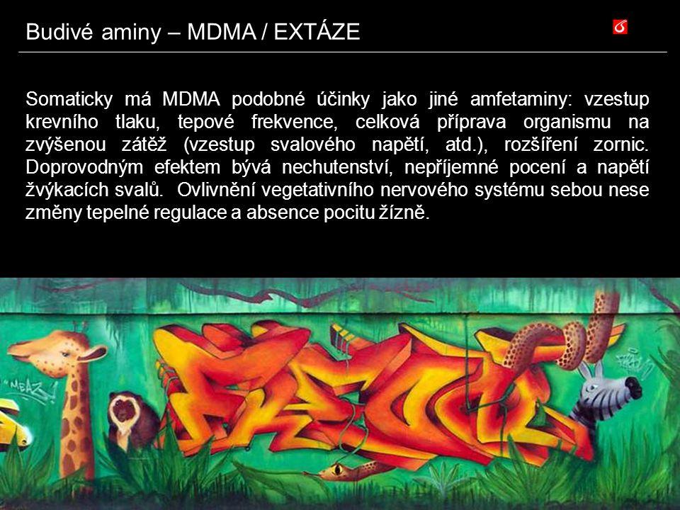 Somaticky má MDMA podobné účinky jako jiné amfetaminy: vzestup krevního tlaku, tepové frekvence, celková příprava organismu na zvýšenou zátěž (vzestup
