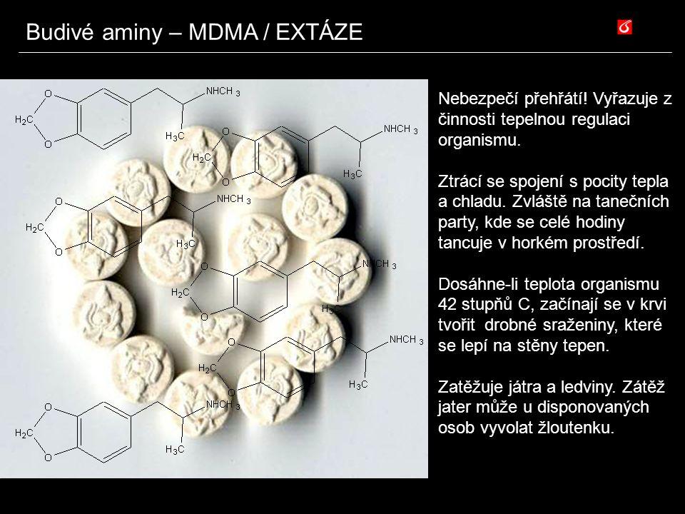 Budivé aminy – MDMA / EXTÁZE Nebezpečí přehřátí! Vyřazuje z činnosti tepelnou regulaci organismu. Ztrácí se spojení s pocity tepla a chladu. Zvláště n