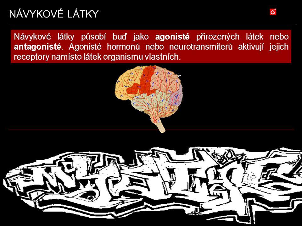Halucinogeny Reálná rizika psychedelik mají poněkud jiný charakter než je tomu u ostatních návykových látek.