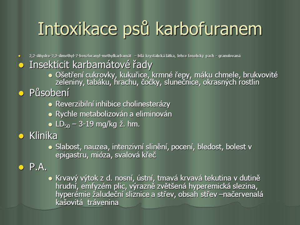 Intoxikace psů karbofuranem 2,2-dihydro-2,2-dimethyl-7-benzfuranyl-methylkarbamát – bílá krystalická látka, lehce fenolický pach - granulovaná 2,2-dih