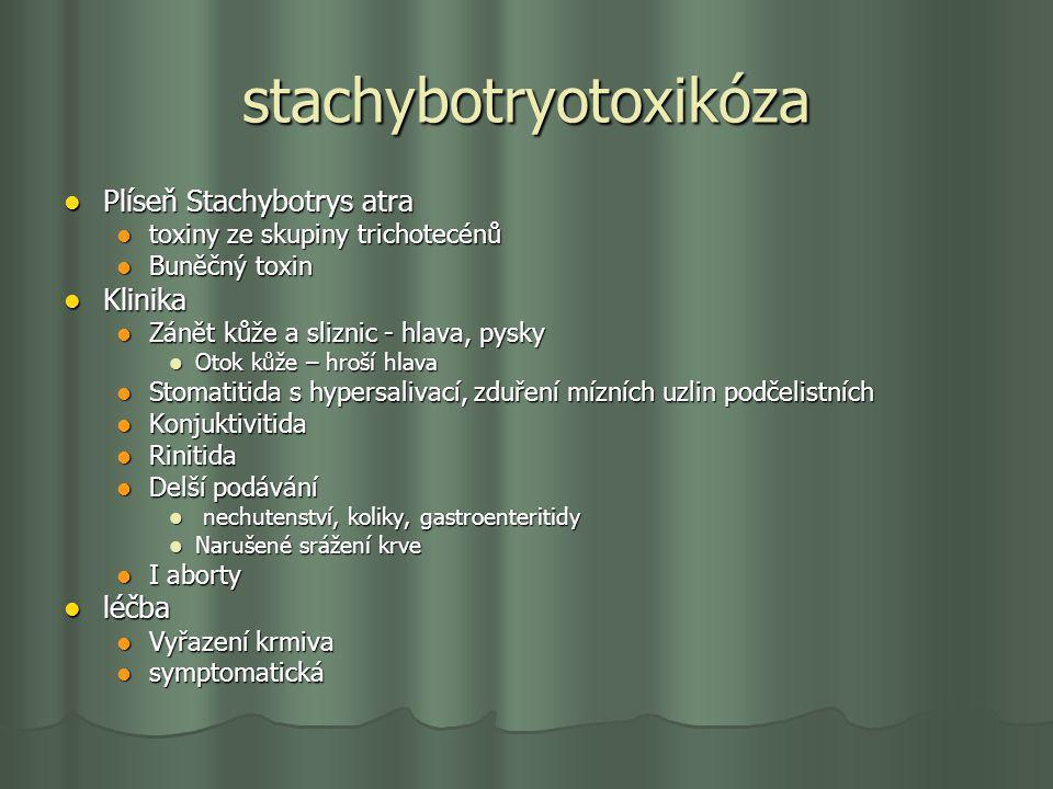 stachybotryotoxikóza Plíseň Stachybotrys atra Plíseň Stachybotrys atra toxiny ze skupiny trichotecénů toxiny ze skupiny trichotecénů Buněčný toxin Bun
