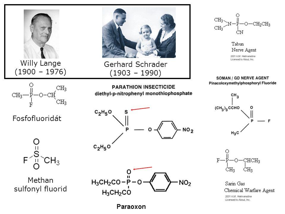 Fosfofluoridát Methan sulfonyl fluorid Willy Lange (1900 – 1976) Gerhard Schrader (1903 – 1990)