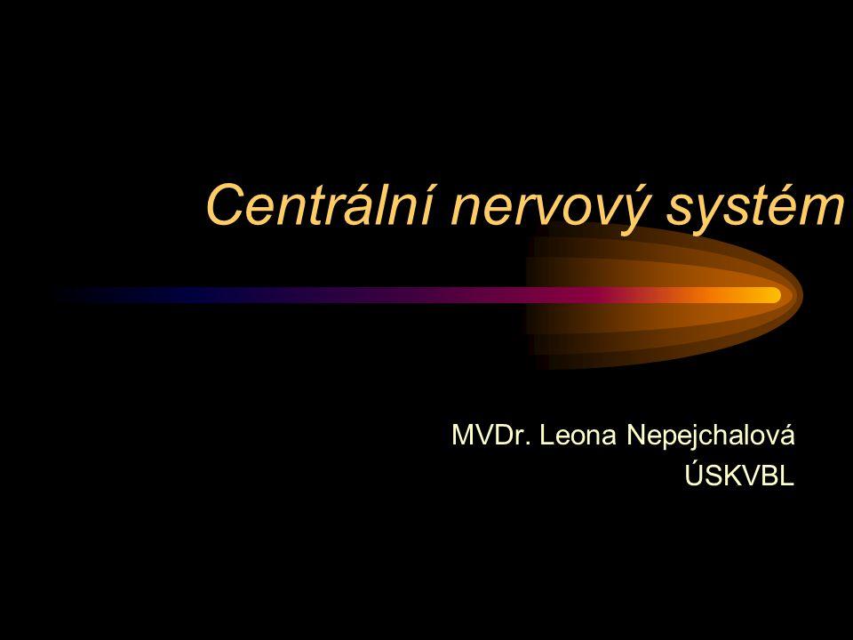 Centrální nervový systém MVDr. Leona Nepejchalová ÚSKVBL