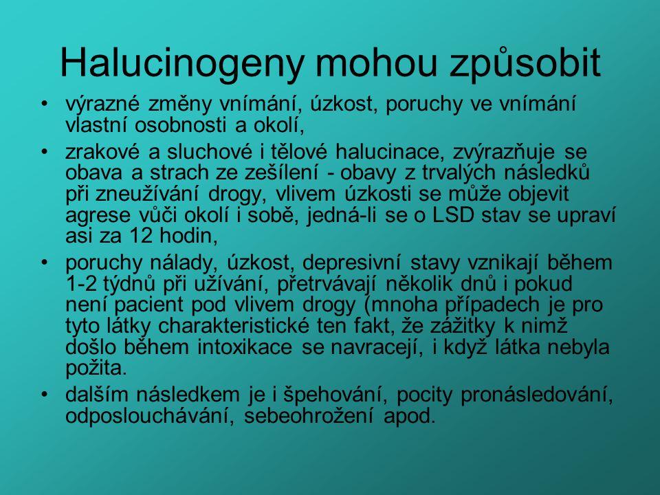 Halucinogeny mohou způsobit výrazné změny vnímání, úzkost, poruchy ve vnímání vlastní osobnosti a okolí, zrakové a sluchové i tělové halucinace, zvýra