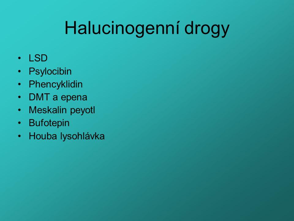 Halucinogenní drogy LSD Psylocibin Phencyklidin DMT a epena Meskalin peyotl Bufotepin Houba lysohlávka