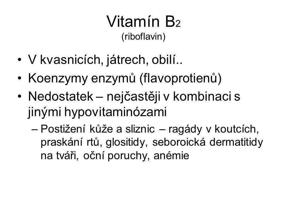Vitamín B 2 (riboflavin) V kvasnicích, játrech, obilí.. Koenzymy enzymů (flavoprotienů) Nedostatek – nejčastěji v kombinaci s jinými hypovitaminózami