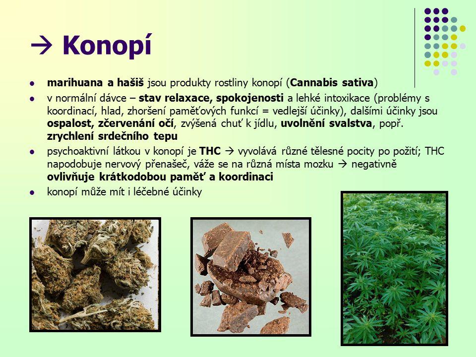  Konopí marihuana a hašiš jsou produkty rostliny konopí (Cannabis sativa) v normální dávce – stav relaxace, spokojenosti a lehké intoxikace (problémy s koordinací, hlad, zhoršení paměťových funkcí = vedlejší účinky), dalšími účinky jsou ospalost, zčervenání očí, zvýšená chuť k jídlu, uvolnění svalstva, popř.