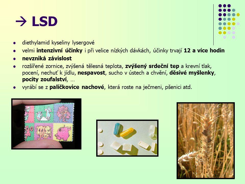  LSD diethylamid kyseliny lysergové velmi intenzivní účinky i při velice nízkých dávkách, účinky trvají 12 a více hodin nevzniká závislost rozšířené zornice, zvýšená tělesná teplota, zvýšený srdeční tep a krevní tlak, pocení, nechuť k jídlu, nespavost, sucho v ústech a chvění, děsivé myšlenky, pocity zoufalství, … vyrábí se z paličkovice nachové, která roste na ječmeni, pšenici atd.