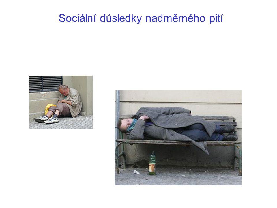 Sociální důsledky nadměrného pití