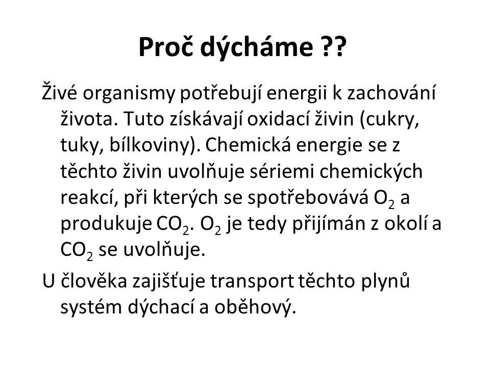 Proč dýcháme ?? Živé organismy potřebují energii k zachování života. Tuto získávají oxidací živin (cukry, tuky, bílkoviny). Chemická energie se z těch