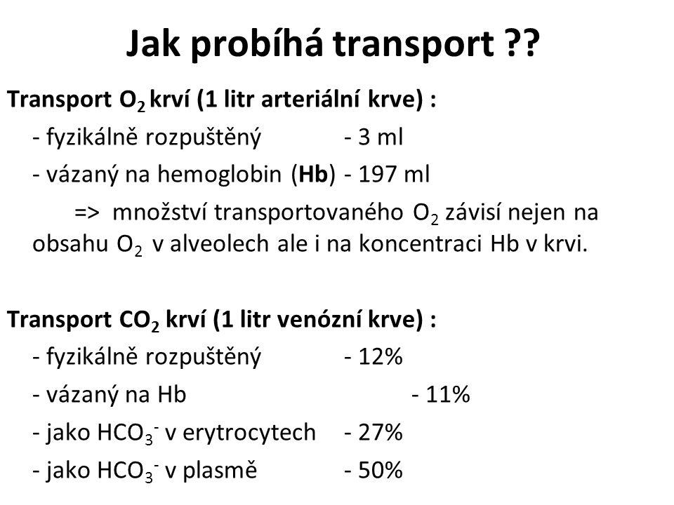 Jak probíhá transport ?? Transport O 2 krví (1 litr arteriální krve) : - fyzikálně rozpuštěný - 3 ml - vázaný na hemoglobin (Hb)- 197 ml => množství t