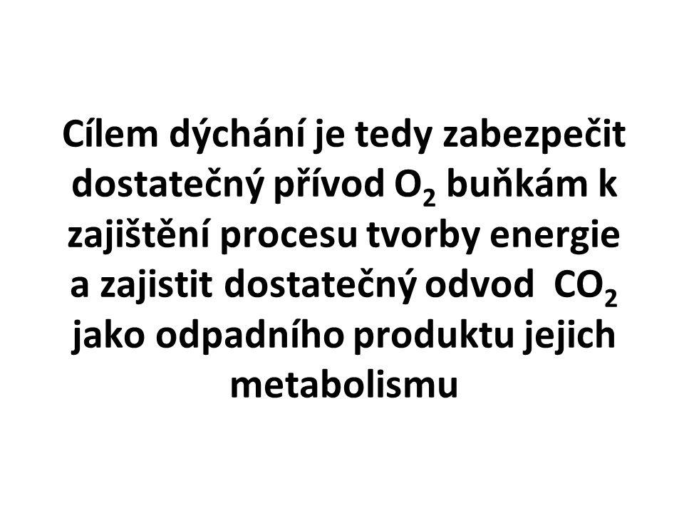 Cílem dýchání je tedy zabezpečit dostatečný přívod O 2 buňkám k zajištění procesu tvorby energie a zajistit dostatečný odvod CO 2 jako odpadního produ