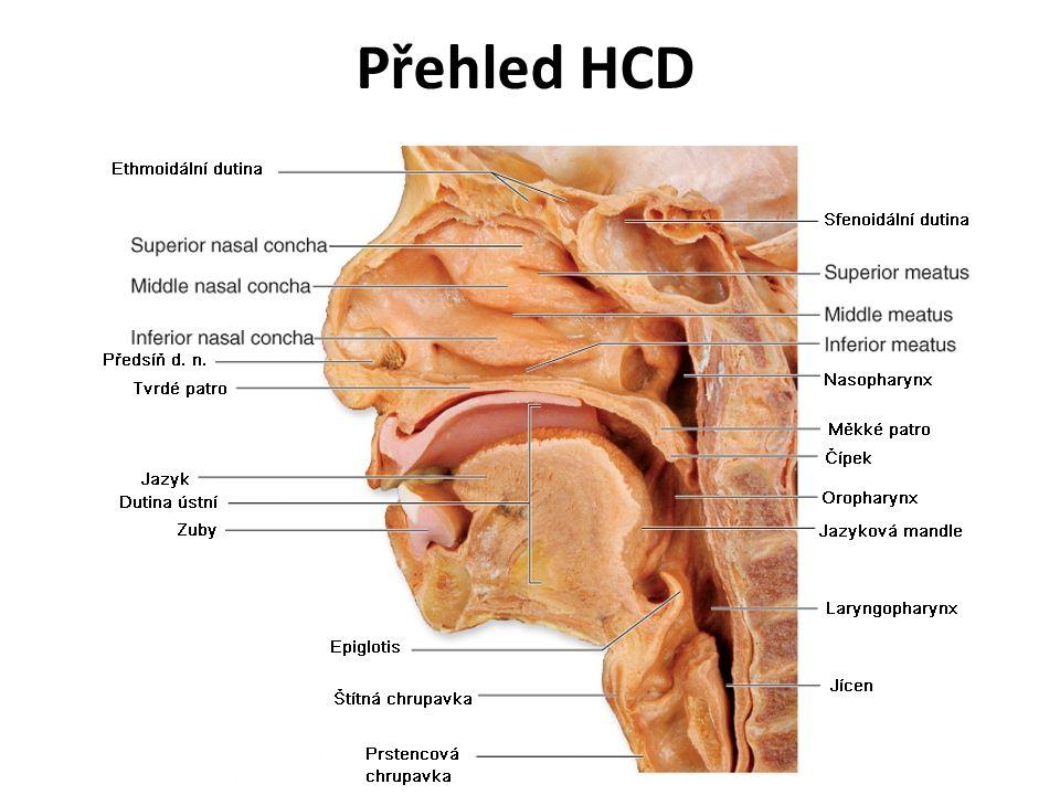 Obstrukce dýchacích cest Etiologie: –Cizí těleso (zubní protéza, jídlo (hrášek, bonbóny), hračky u dětí) –Zapadlý jazyk –Aspirace (krev, koagula, zvratky) –Laryngospazmus –Zánět HCD (Epiglotitis, Laryngitis) –Stenózy HCD (postintubační) –Otok HCD (alergická reakce po bodnutí hmyzem) –Přímé poranění HCD (mechanické, poleptání)