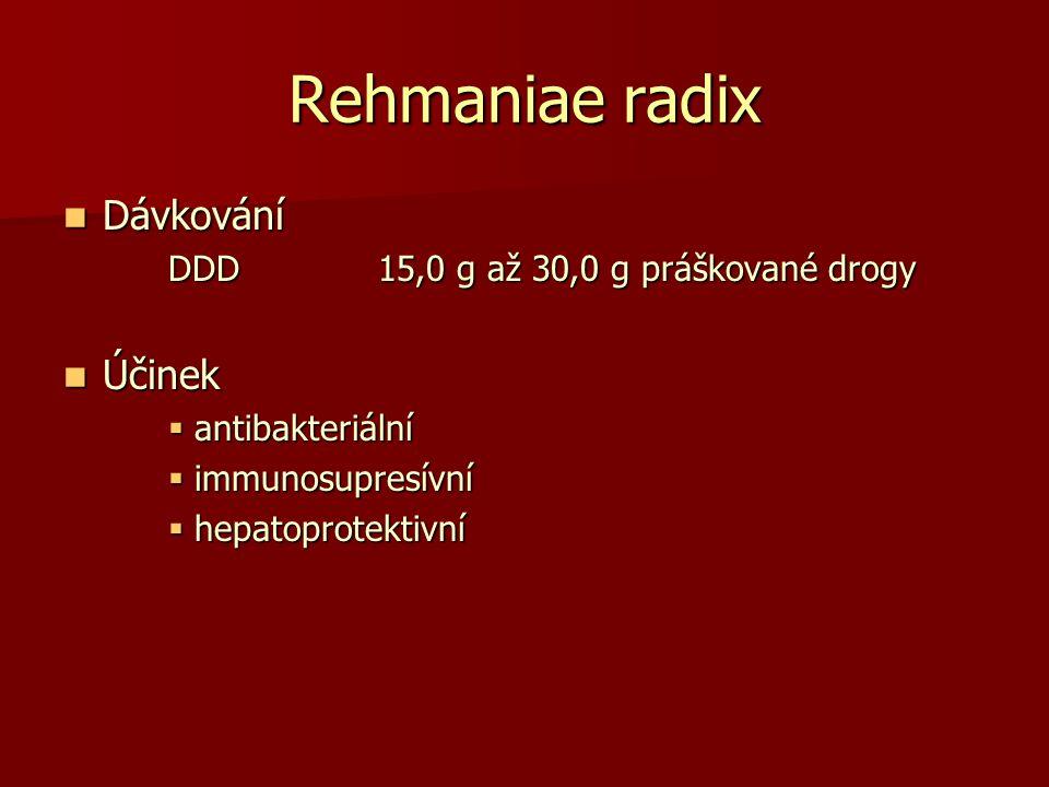 Rehmaniae radix Dávkování Dávkování DDD15,0 g až 30,0 g práškované drogy Účinek Účinek  antibakteriální  immunosupresívní  hepatoprotektivní