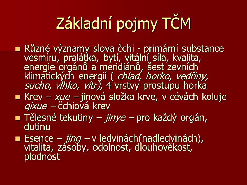 Základní pojmy TČM Různé významy slova čchi - primární substance vesmíru, pralátka, bytí, vitální síla, kvalita, energie orgánů a meridiánů, šest zevn