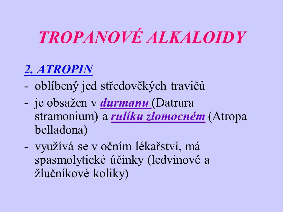 TROPANOVÉ ALKALOIDY 2. ATROPIN -oblíbený jed středověkých travičů -je obsažen v durmanu (Datrura stramonium) a rulíku zlomocném (Atropa belladona) -vy