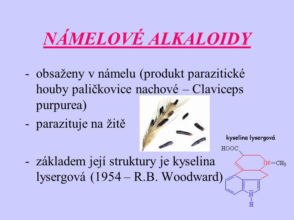NÁMELOVÉ ALKALOIDY -obsaženy v námelu (produkt parazitické houby paličkovice nachové – Claviceps purpurea) -parazituje na žitě -základem její struktur