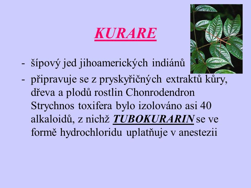 KURARE -šípový jed jihoamerických indiánů -připravuje se z pryskyřičných extraktů kůry, dřeva a plodů rostlin Chonrodendron Strychnos toxifera bylo iz