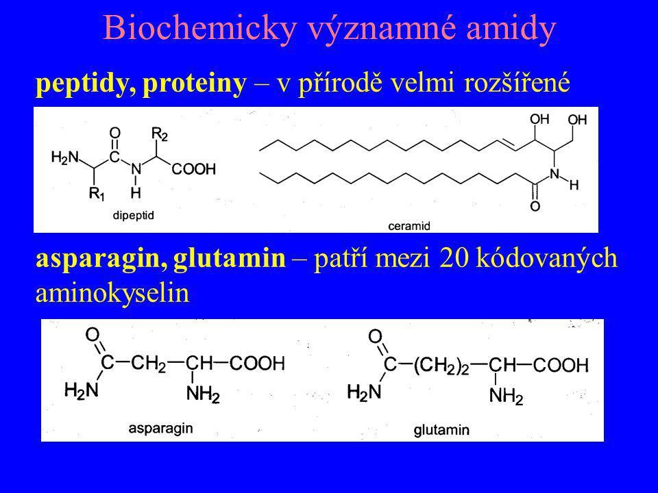 Biochemicky významné amidy peptidy, proteiny – v přírodě velmi rozšířené asparagin, glutamin – patří mezi 20 kódovaných aminokyselin