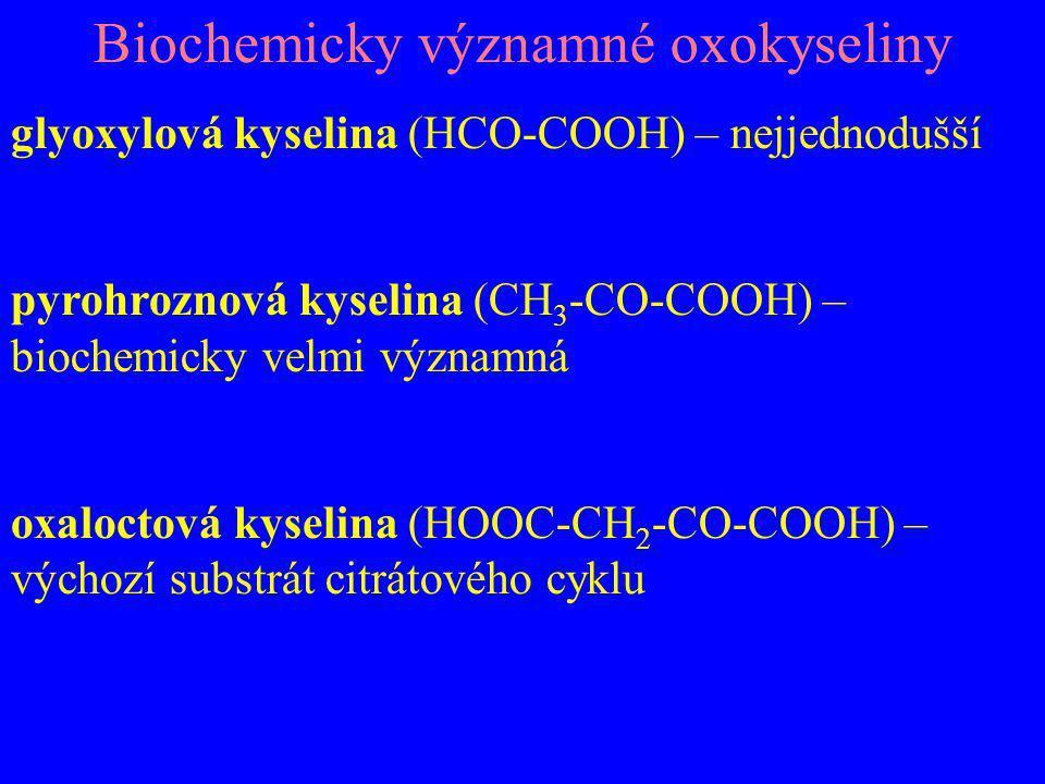 Biochemicky významné oxokyseliny glyoxylová kyselina (HCO-COOH) – nejjednodušší pyrohroznová kyselina (CH 3 -CO-COOH) – biochemicky velmi významná oxa