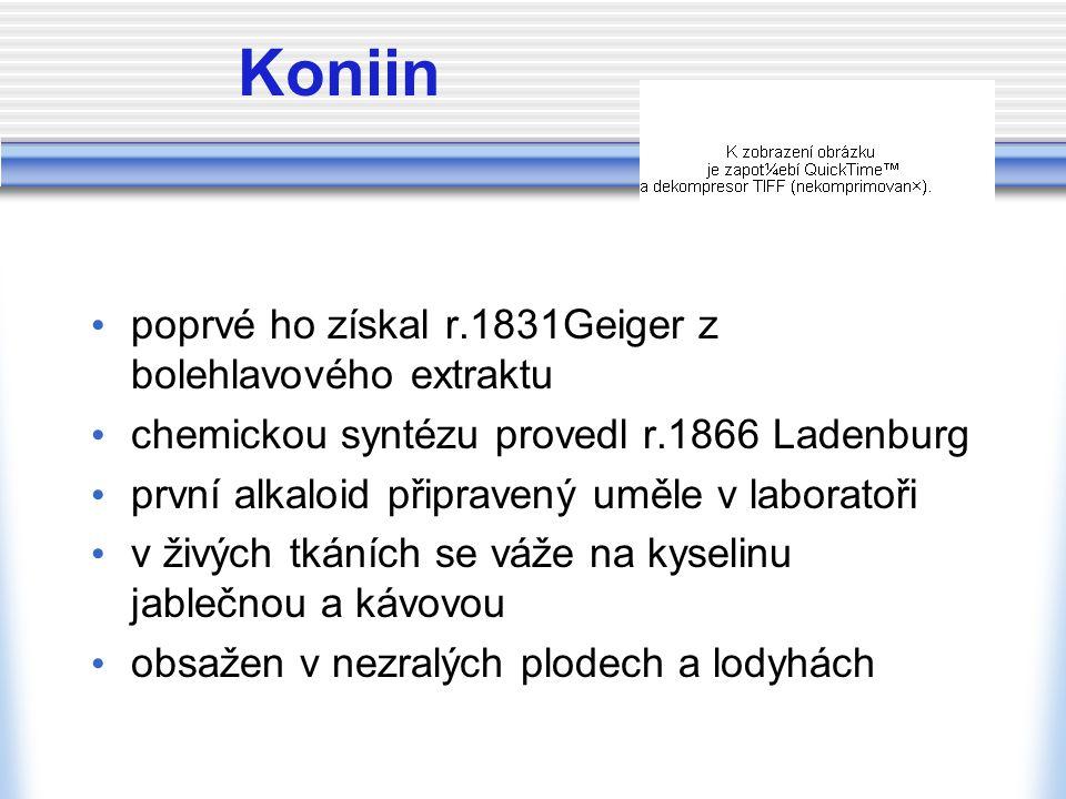 Koniin poprvé ho získal r.1831Geiger z bolehlavového extraktu chemickou syntézu provedl r.1866 Ladenburg první alkaloid připravený uměle v laboratoři v živých tkáních se váže na kyselinu jablečnou a kávovou obsažen v nezralých plodech a lodyhách