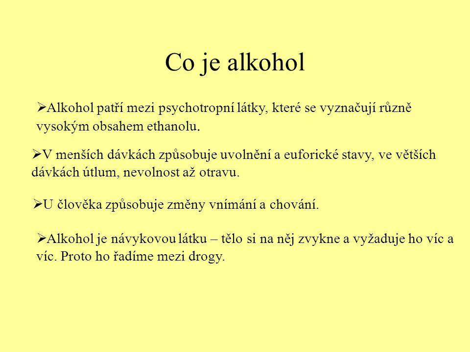 Rizika alkoholismu Pití alkoholu přináší lidem problémy především v oblasti:  tělesného zdraví  duševního zdraví  vztahů k druhým lidem  financí  životního stylu  práce Obr.