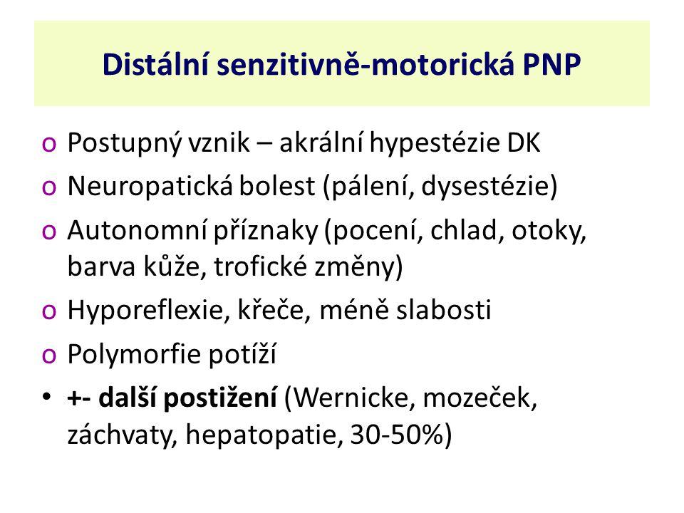 Distální senzitivně-motorická PNP oPostupný vznik – akrální hypestézie DK oNeuropatická bolest (pálení, dysestézie) oAutonomní příznaky (pocení, chlad