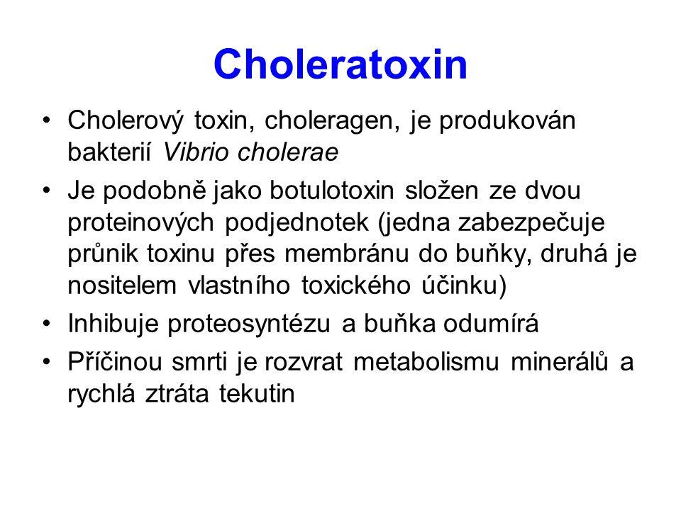 Choleratoxin Cholerový toxin, choleragen, je produkován bakterií Vibrio cholerae Je podobně jako botulotoxin složen ze dvou proteinových podjednotek (