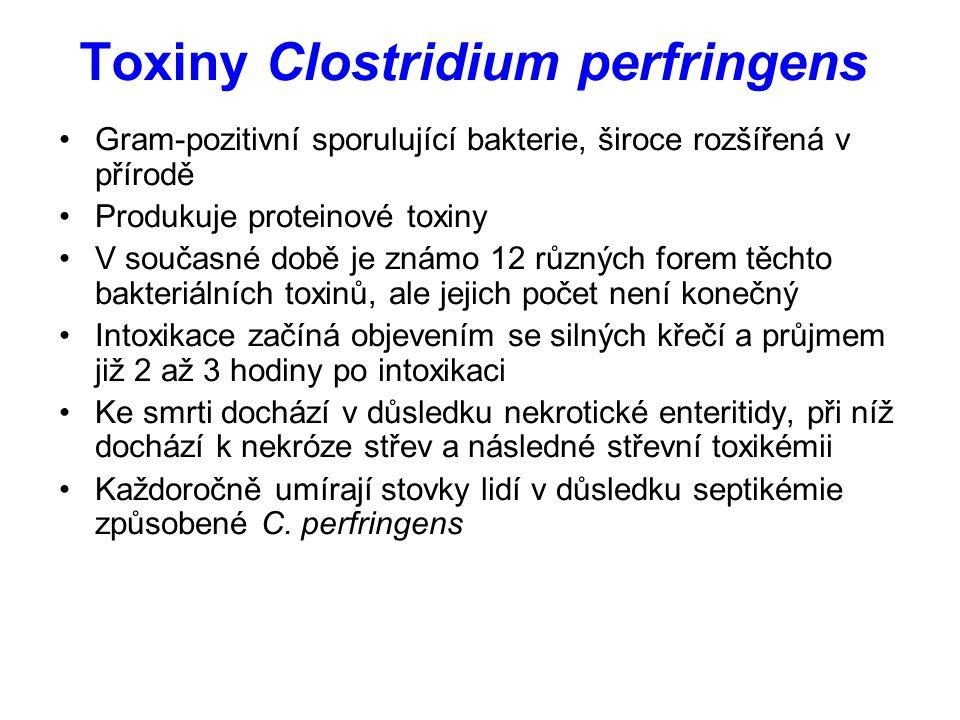 Toxiny Clostridium perfringens Gram-pozitivní sporulující bakterie, široce rozšířená v přírodě Produkuje proteinové toxiny V současné době je známo 12