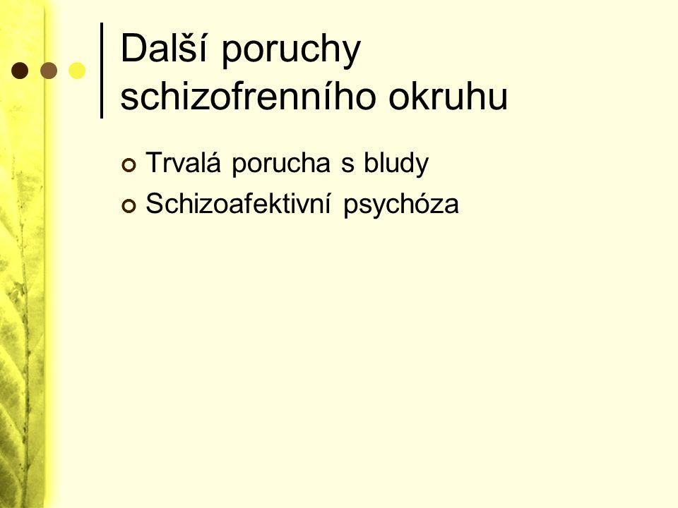 Další poruchy schizofrenního okruhu Trvalá porucha s bludy Schizoafektivní psychóza
